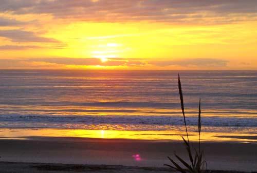 Folly Beach Getaway Pet Friendly Vacation Rental